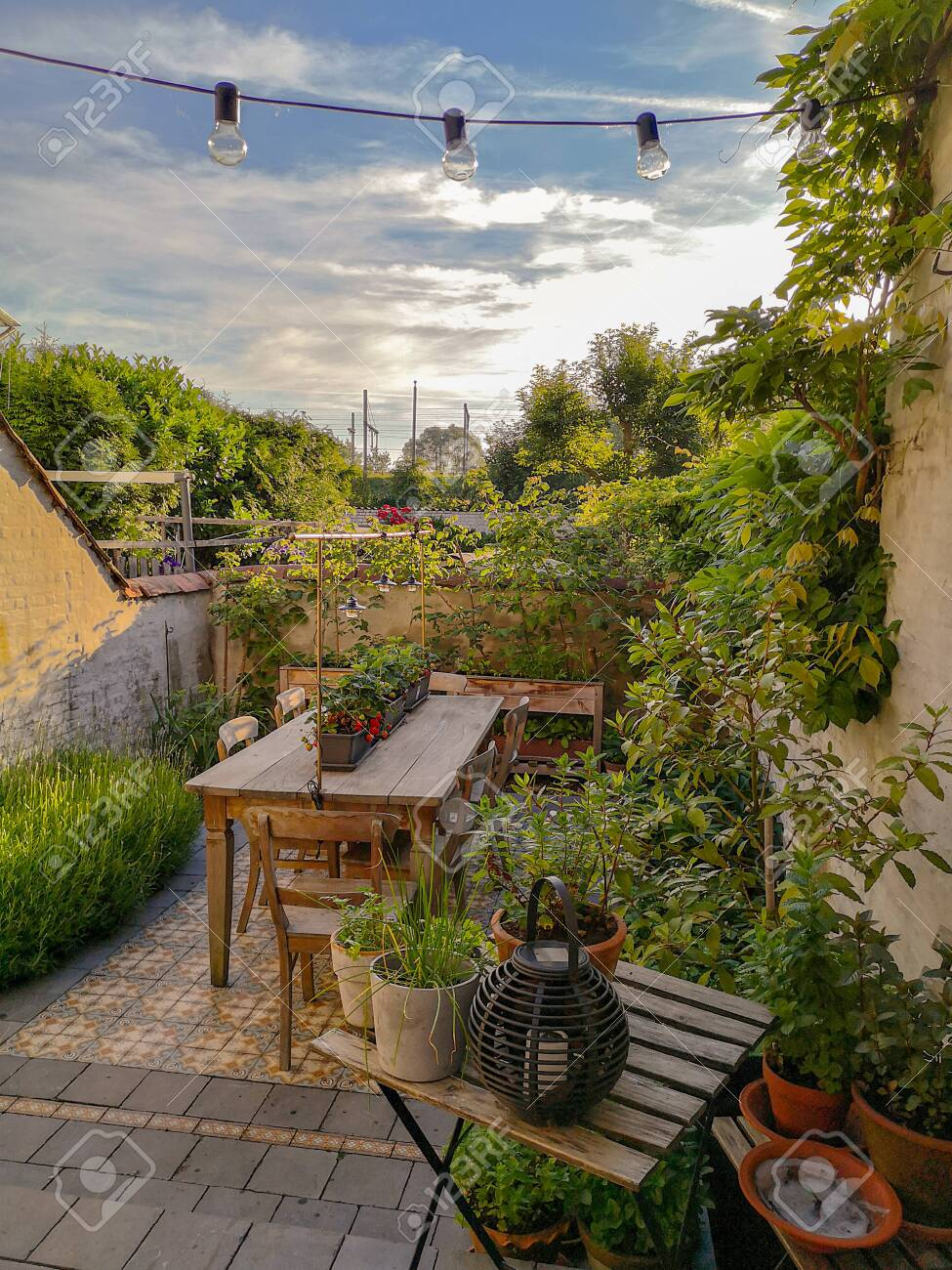 small patio garden with vintage cement tiles and full with numerous