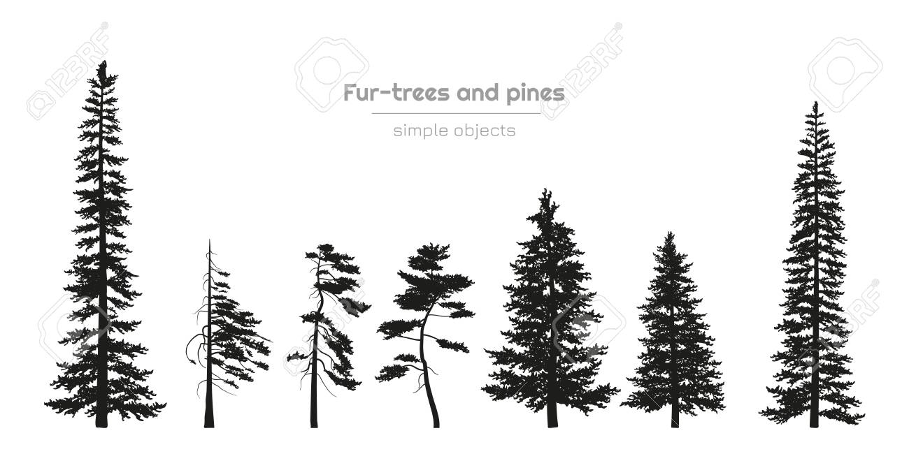Stock illustration by vertyr 1 / 7 coniferous forest, sea horizon and colorful sky. Black Silhouettes Of Fur Trees And Pines Forest Landscape Isolated Drawing Of Simple Objects Vector Illustration Royalty Free Cliparts Vectors And Stock Illustration Image 109983183