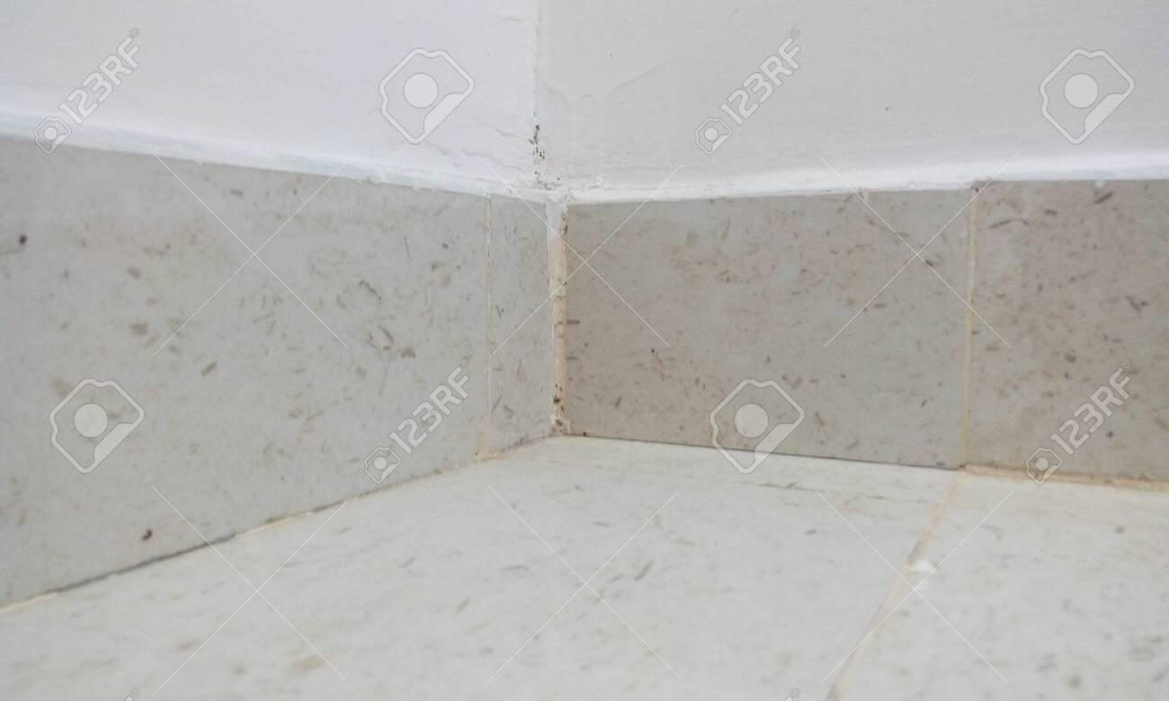 ceramic tile skirting beige color fixed on wall for an residential