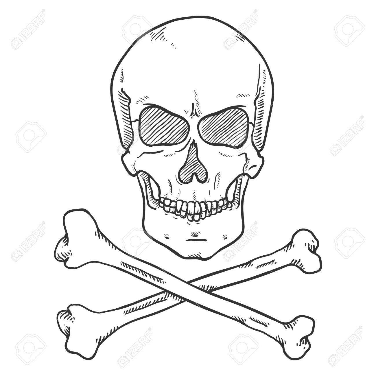 Vector Sketch Pirate Symbol Human Skull With Cross Bones Royalty Free Cliparts Vectors And Stock Illustration Image 111968087