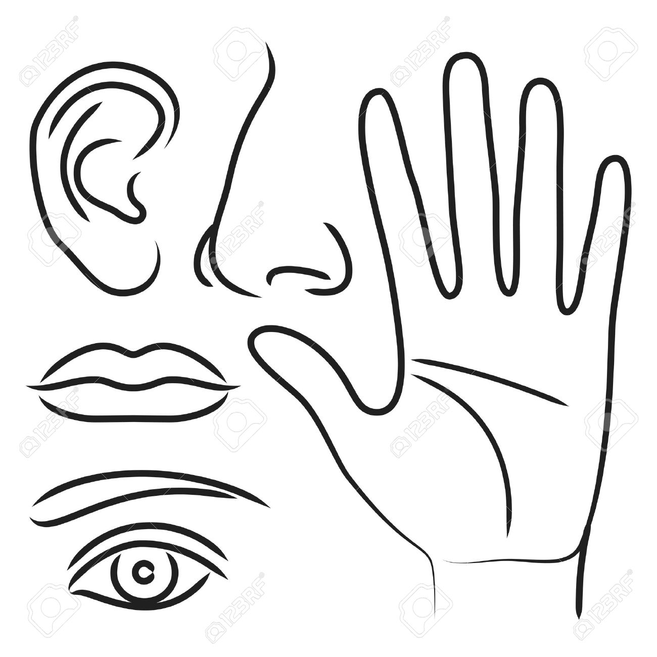 Coloring Pages Eyes Ears Nose Mouth Coloring Page