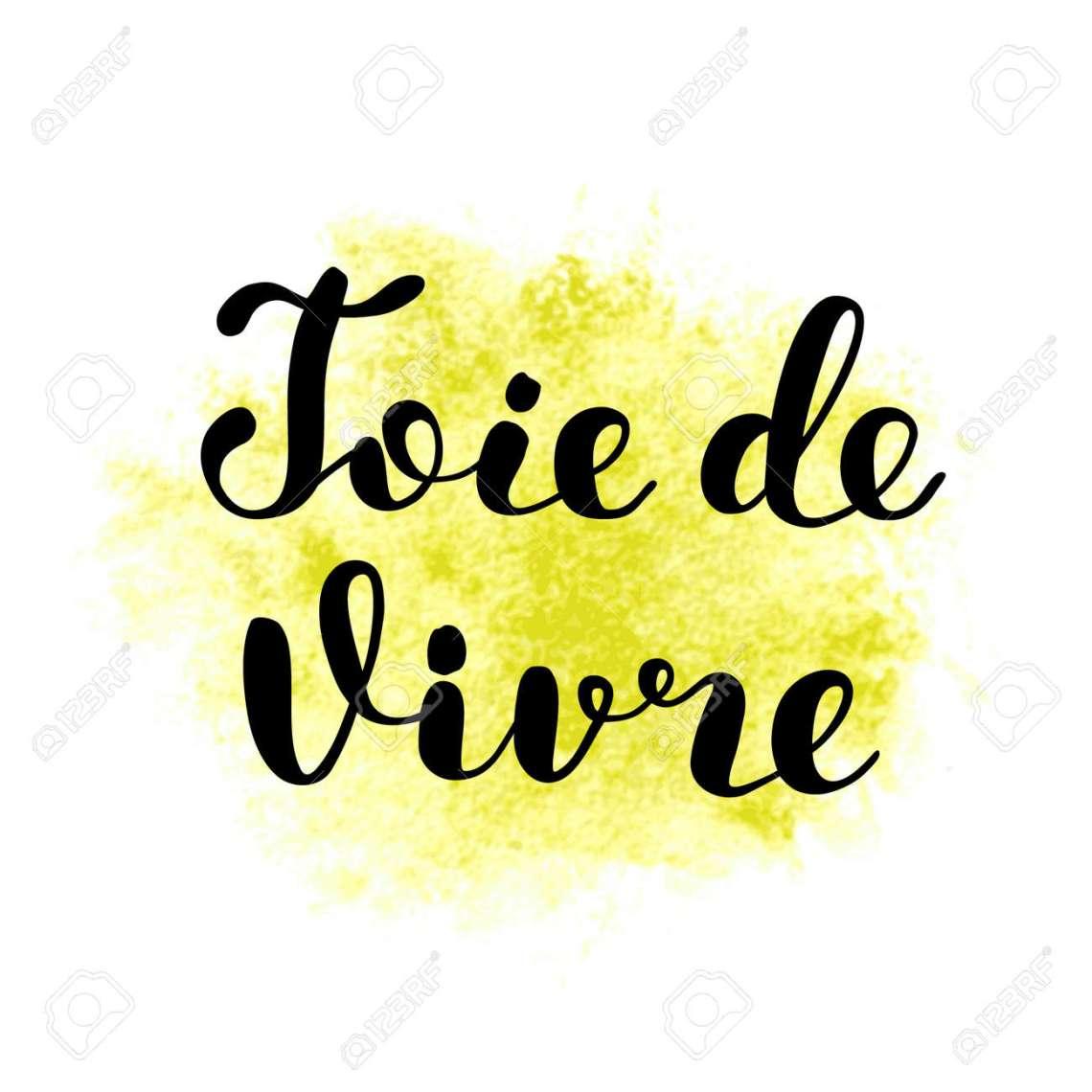Lebensfreude Auf Franzosisch Pinsel Schriftzug Illustration Inspirierende Zitat Motivierende Moderne Kalligraphie