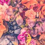 Vintage Flower Background Vintage Filter Stock Photo Picture And Royalty Free Image Image 38267223