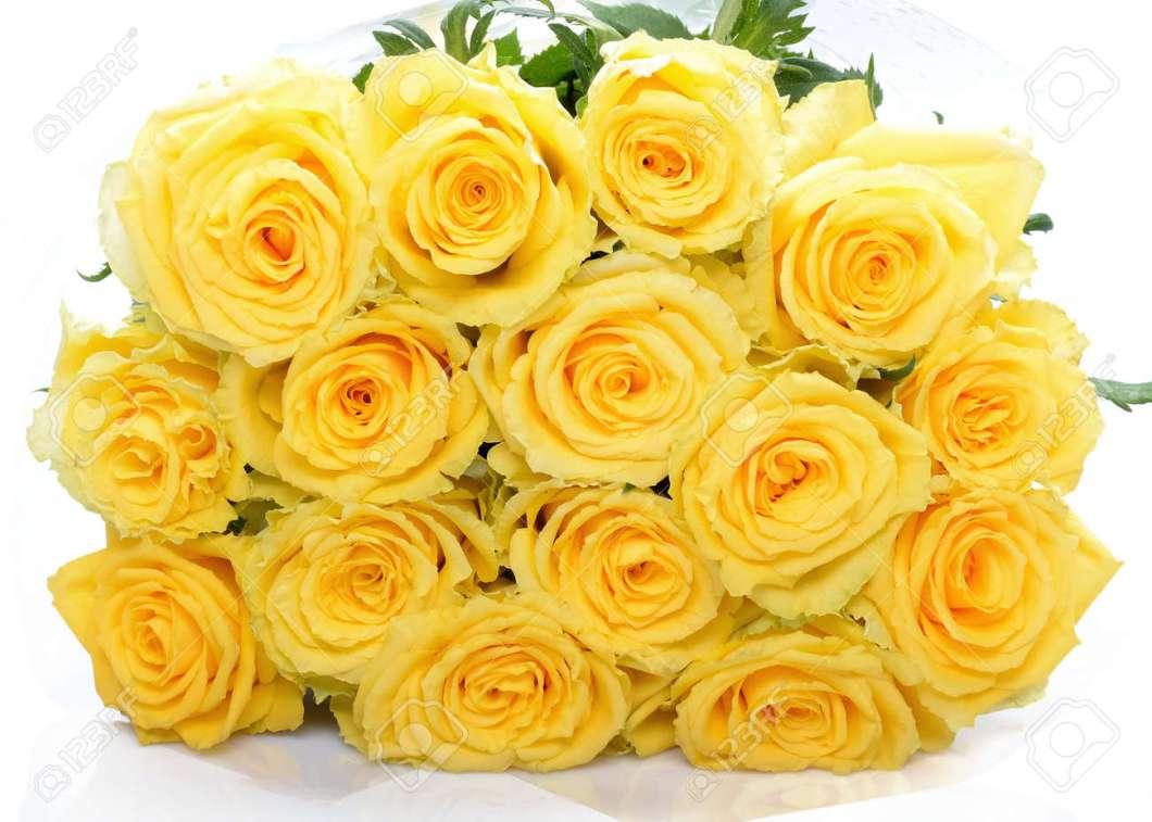 Beautiful Yellow Rose Flowers Images Imagewallpapers