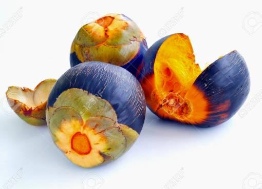 palmyra fruit business