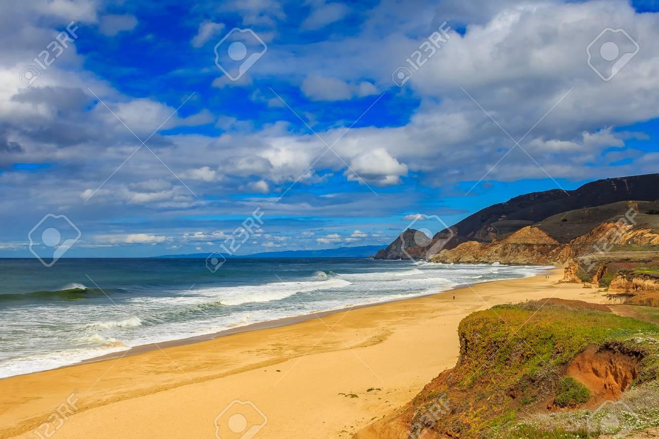 plage accidentee de californie du nord a pacifica pres de san francisco par une journee nuageuse avec un rayon de soleil sur le sable avec des fleurs de printemps au premier plan