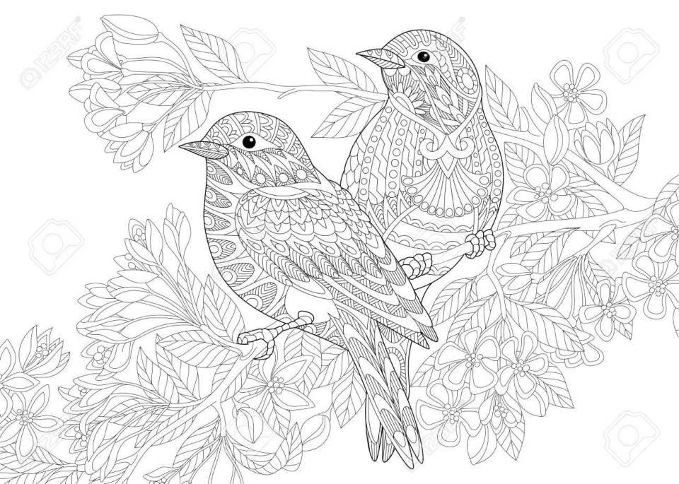 2 羽の鳥の着色のページ。フリーハンド スケッチ落書きと zentangle 要素
