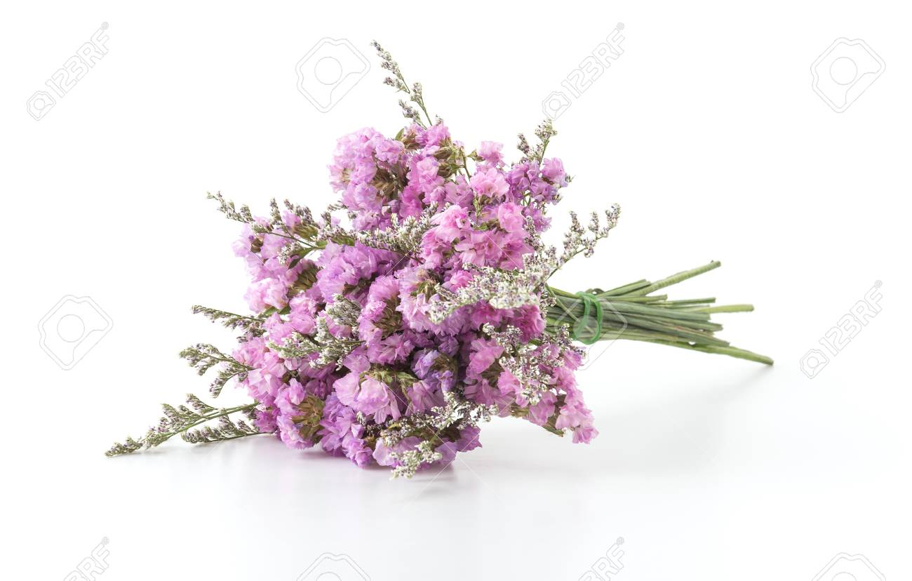 Statice Flower Bouquet On White Background Stock Photo  Picture And     statice flower bouquet on white background Stock Photo   44355598