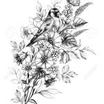 Hand Drawn Goldfinch And Butterfly Sitting On Wildflowers Bouquet Stock Photo Picture And Royalty Free Image Image 131434661