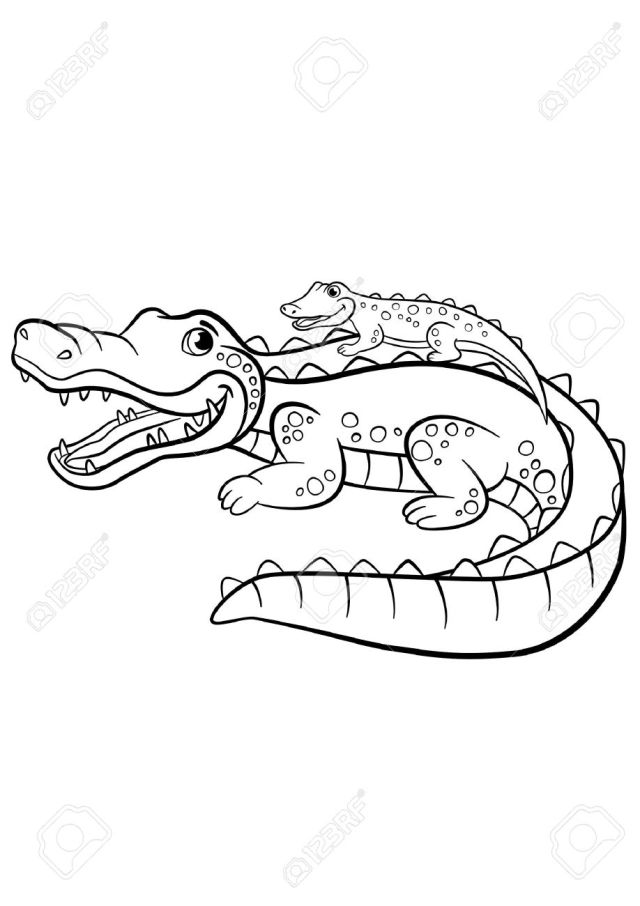 Coloring Pages. Animals. Mother Alligator With Her Little Cute