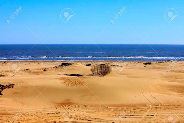 نتيجة بحث الصور عن sea and desert