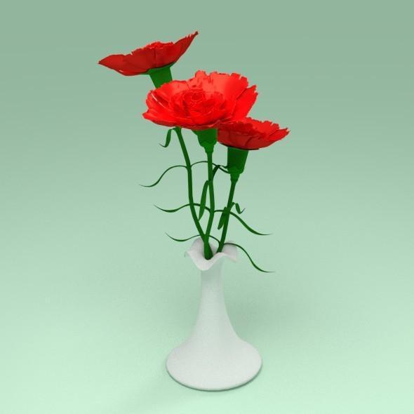 Carnation in a vase