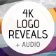 Logo Ident Reveal Pack