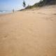 Footprints Left on Wet Sand