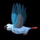 Blue Parrot Flies