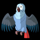 Blue Parrot Gets Angry