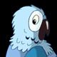 Blue Parrot Turns