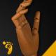 Wood Hand Stop Motion Bundle