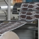 Machinery Shop. Die Cutting of Paper Blanks for Disposable Tableware Production