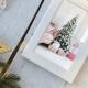Christmas Photo Gallery