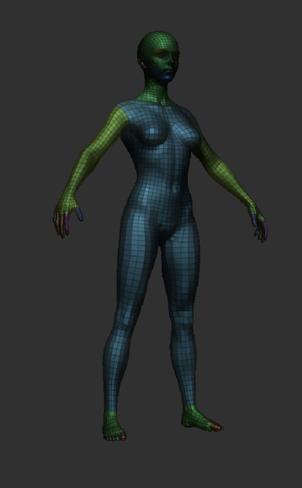 BaseMesh Female 3D