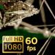 Techno Plexus Background 02