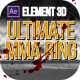 Ultimate MMA Ring