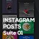 Instagram Posts | Suite 01