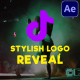 Stylish Logo Reveal   After Effects