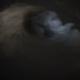 Storm Logo Reveal
