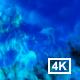 Blue Smoke 4k
