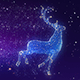 Christmas Reindeer Widescreen Background