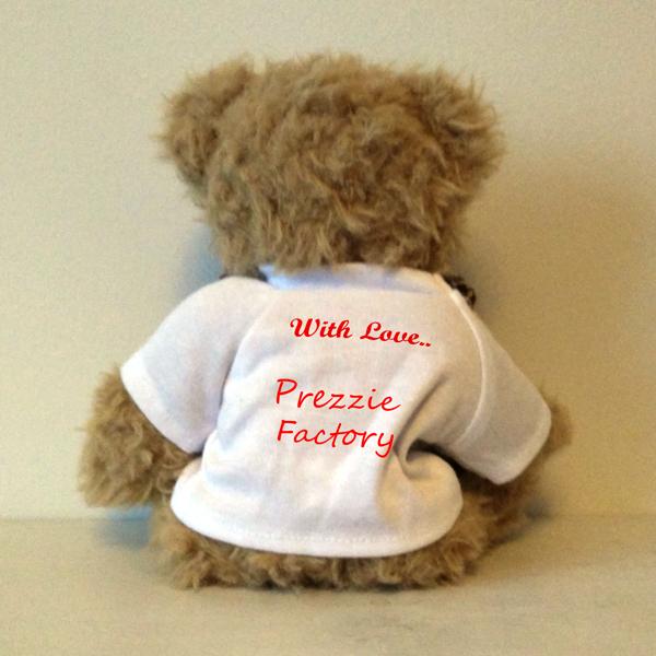 Edward Teddy Bear Back