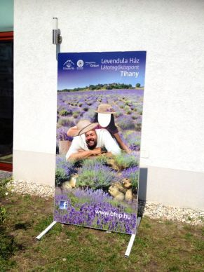 visit at the Lavender house