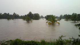Kalpitiya_Anuradhapura065