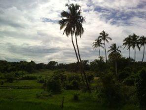 Kalpitiya_Anuradhapura106