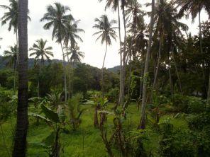 Kalpitiya_Anuradhapura120