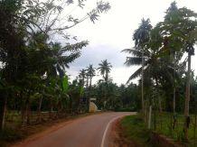 SriLanka-Day1-Madampella31