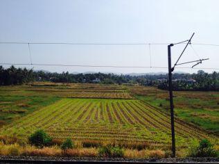 Kerala101