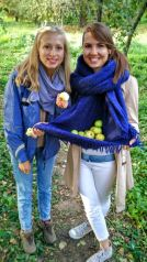 apple harvest in Kolomenskoye
