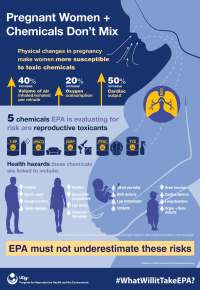 Pregnant women and chemicals infographic image - April 2018.jpg