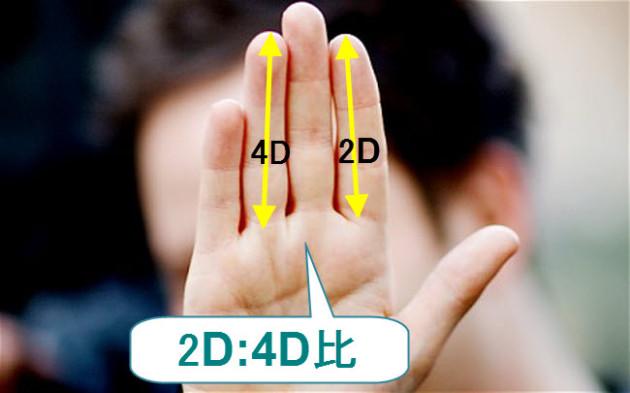 プライスアクションJAPAN-2D:4D比