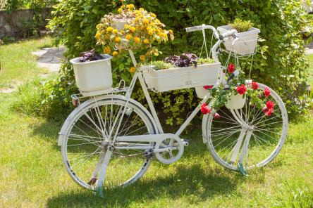 An old bike can become a beautiful planter