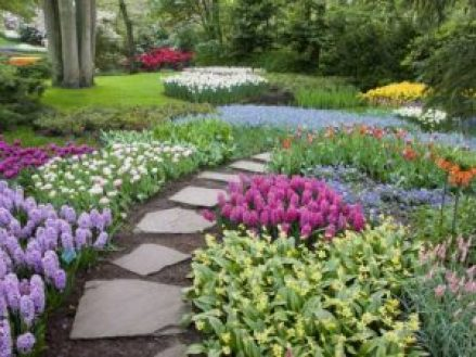 Botanical garden will beautify your yard