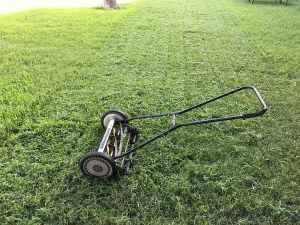 Lawn freshly mowed.