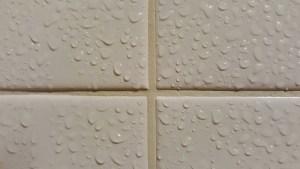 Wet tiles.