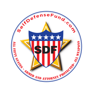 SDF logo drawn_lg_2