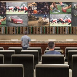 Up to 11 Sportsbooks will open in Indiana in September