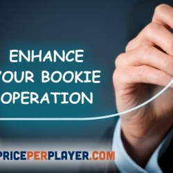 Enhance Your Bookie Operation with a PPH Sportsbook Software