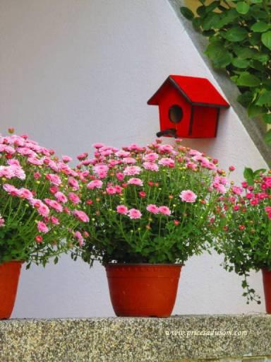 Mislili su i na ptice: Kućica je deo nove dekoracije dvorišta